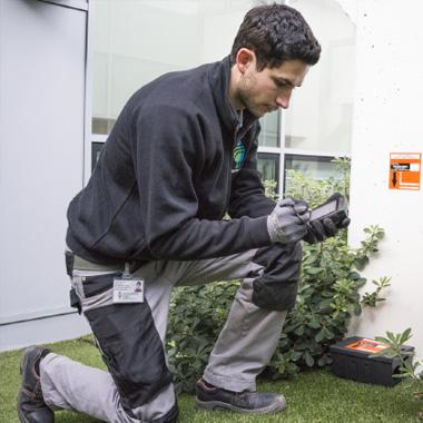 Servizio di Pest Control